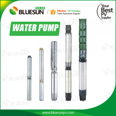 4 inch 6 inch 8 inch stainless steel Solar Water Pump-Bluesun